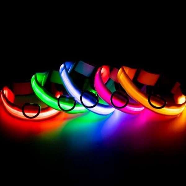 LED Dog collar7