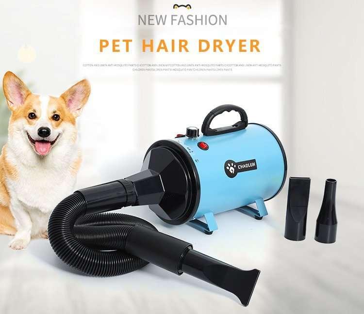 Pet dryer4