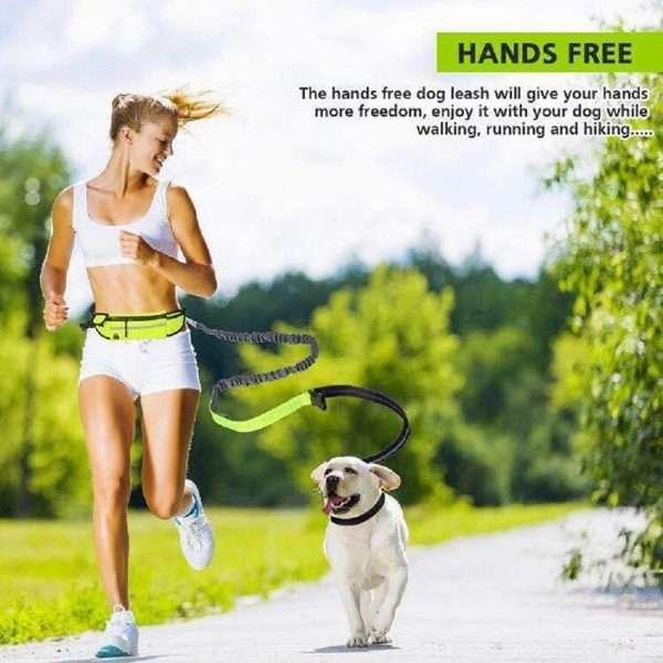 Running waist dog leash2