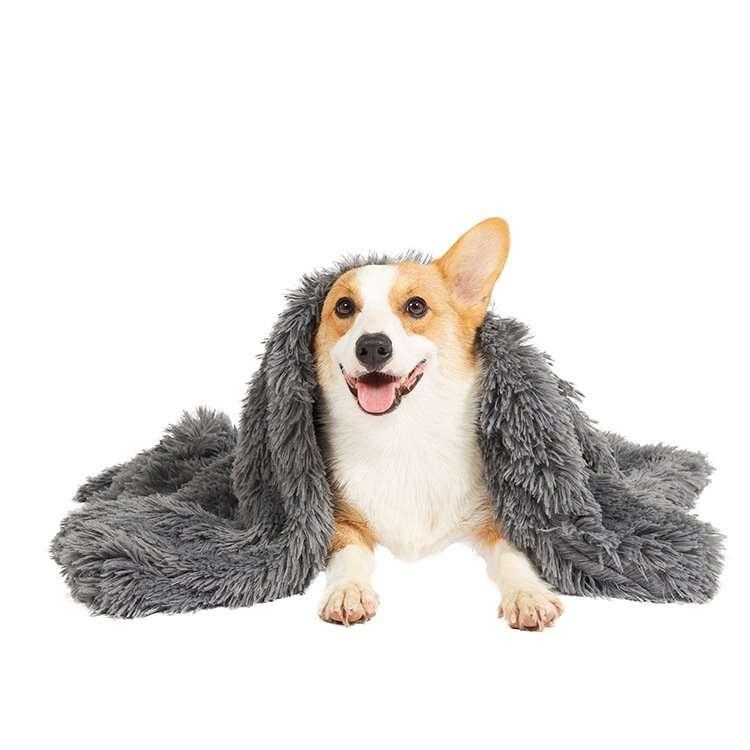 Soft Plush Pet Blanket4