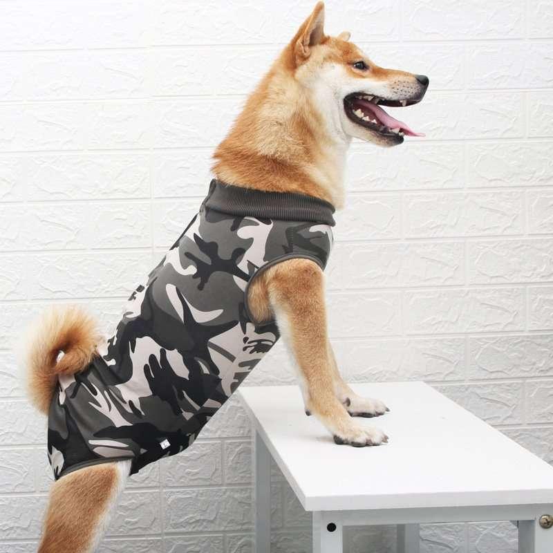 Dog After Surgery Wear