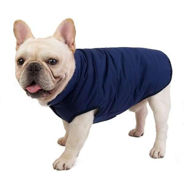 Dog winter coat blue2