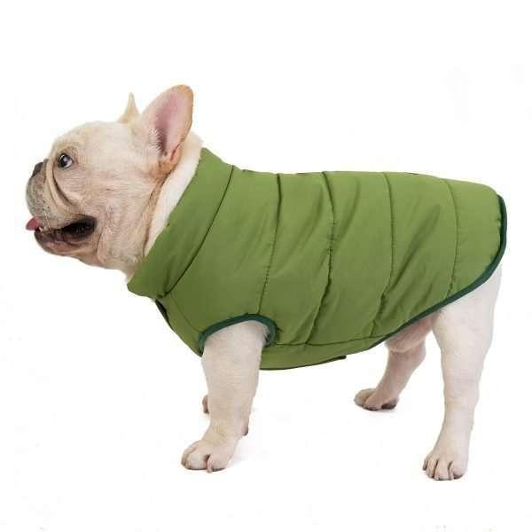 Dog winter coat green 2