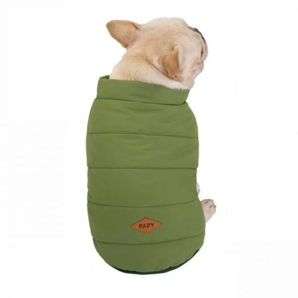 Dog winter coat green