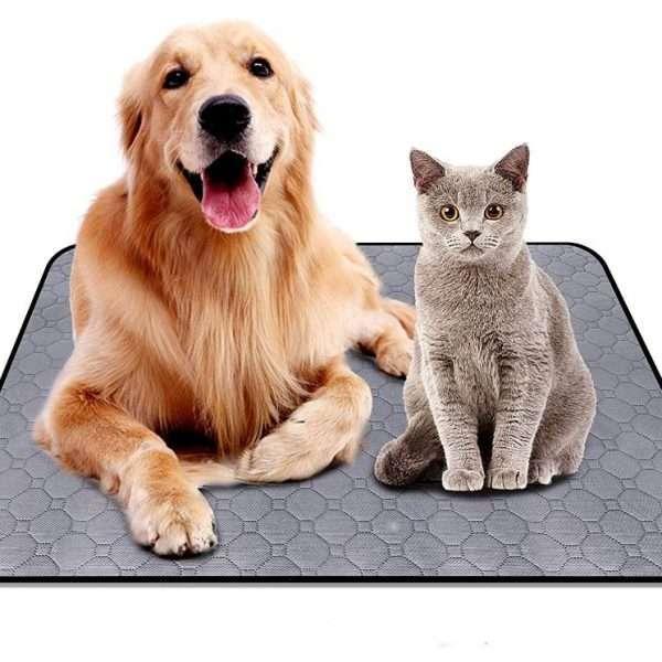 Honden Trainingsmat - Puppy's - Absorptiemat - 70 x 90cm