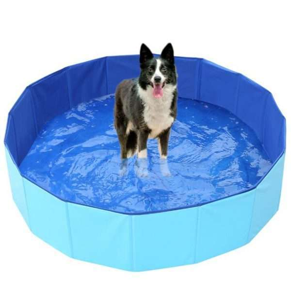 Hondenzwembad - Opvouwbaar Zwembad